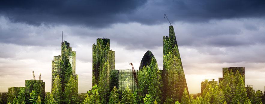 A green city
